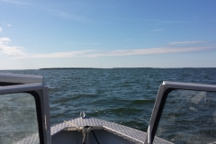 On the Lake 21-July-2015
